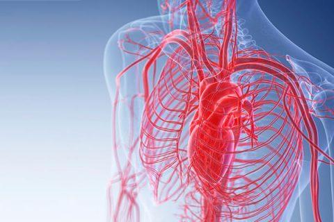 Lymfatický systém ako skladačka ciev v ľudskom tele a pôsobenie telových sviečok